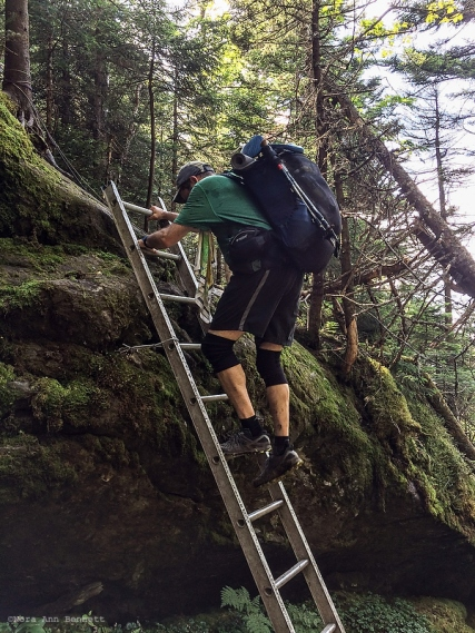 BC descends into Ladder Ravine.