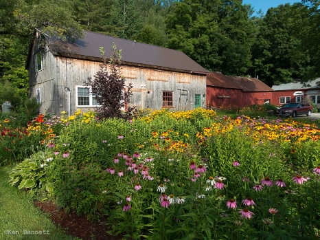 The perennial garden at Nye's Green Valley Farm.